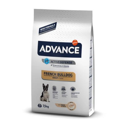 Advance French Bulldog Adulto