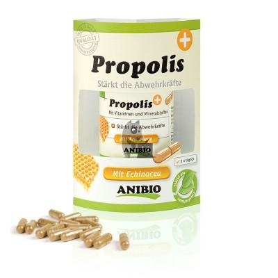 Anibio Propólis
