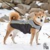 Dog Gone Smart Meteor Nano-Breaker Capa