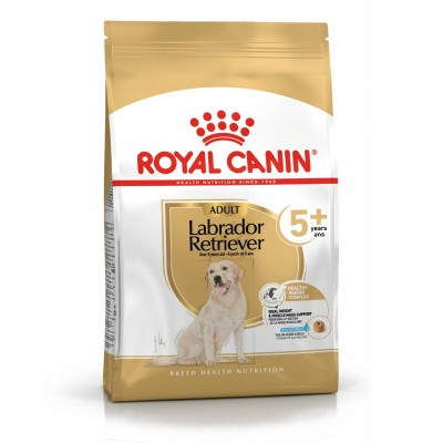 Royal Canin Seca Labrador Retriever Adulto 5+