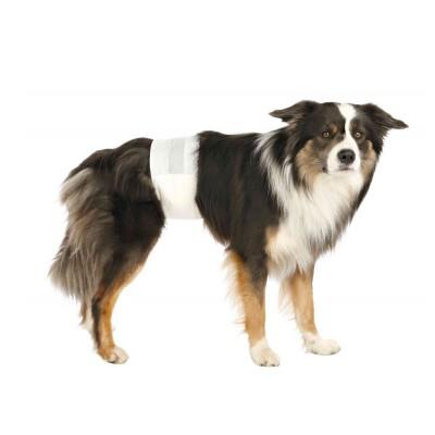 Trixie bandas descartáveis para cães machos